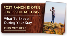 Post Ranch Inn is open for Essential Travel: What to expect during your Stay – find out here.